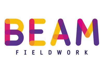 BEAM Fieldwork