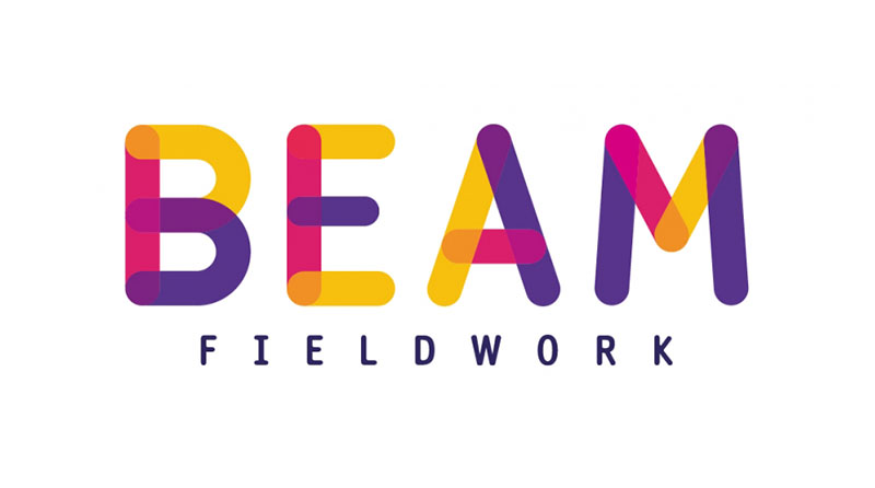 BEAM Fieldwork logo